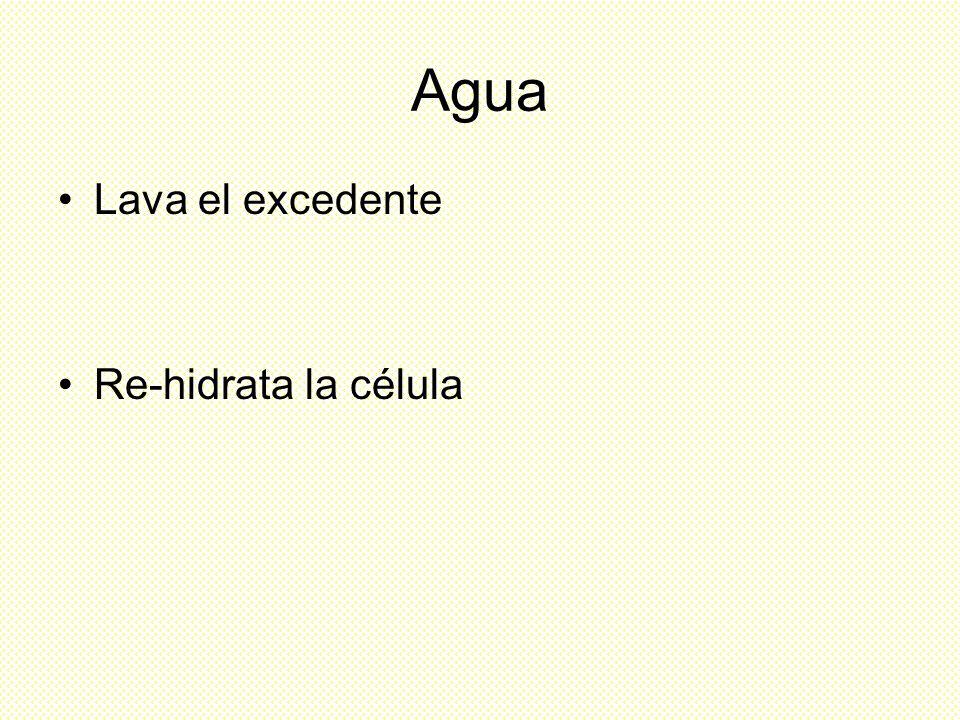 Agua Lava el excedente Re-hidrata la célula