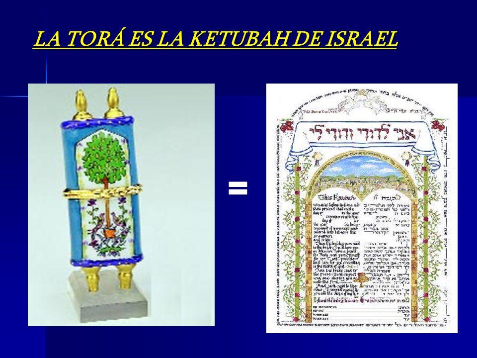 LA TORÁ ES LA KETUBAH DE ISRAEL