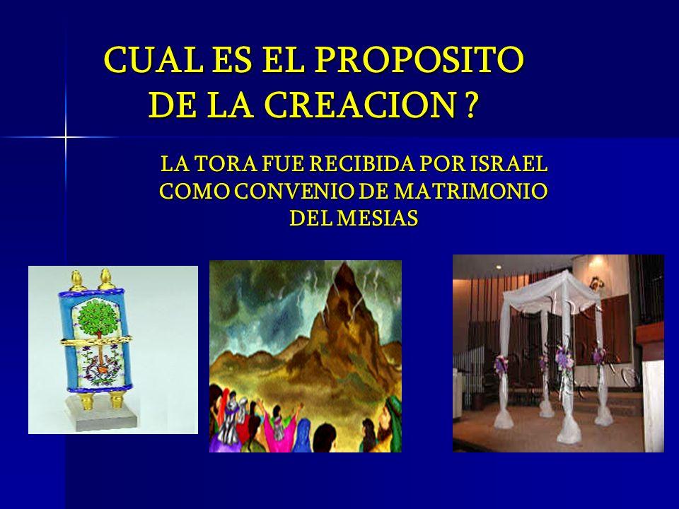 LA TORA FUE RECIBIDA POR ISRAEL COMO CONVENIO DE MATRIMONIO DEL MESIAS