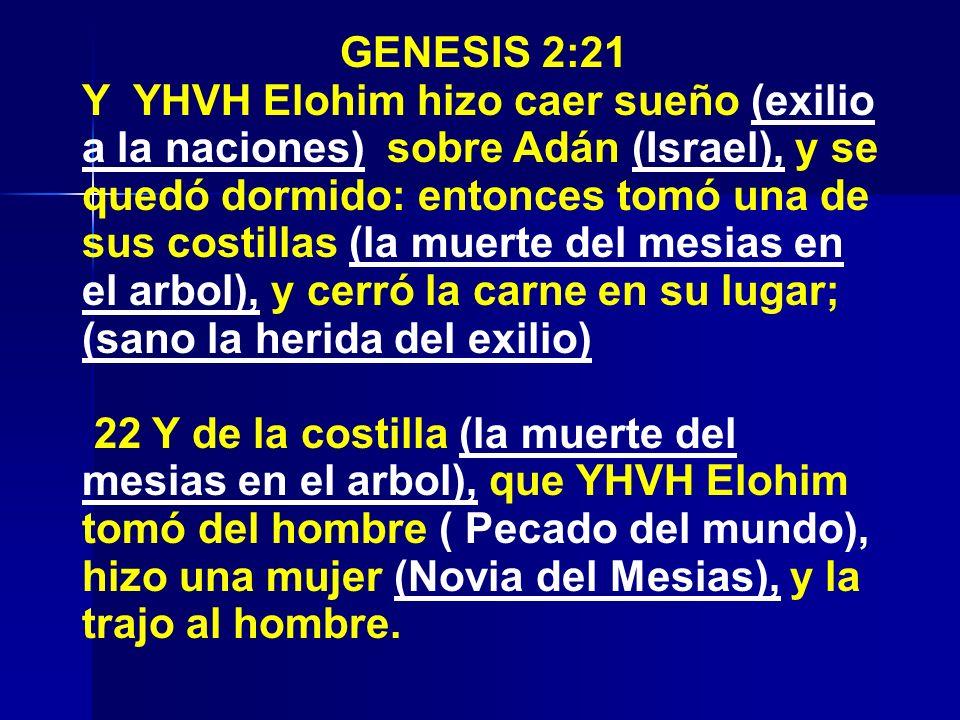 GENESIS 2:21