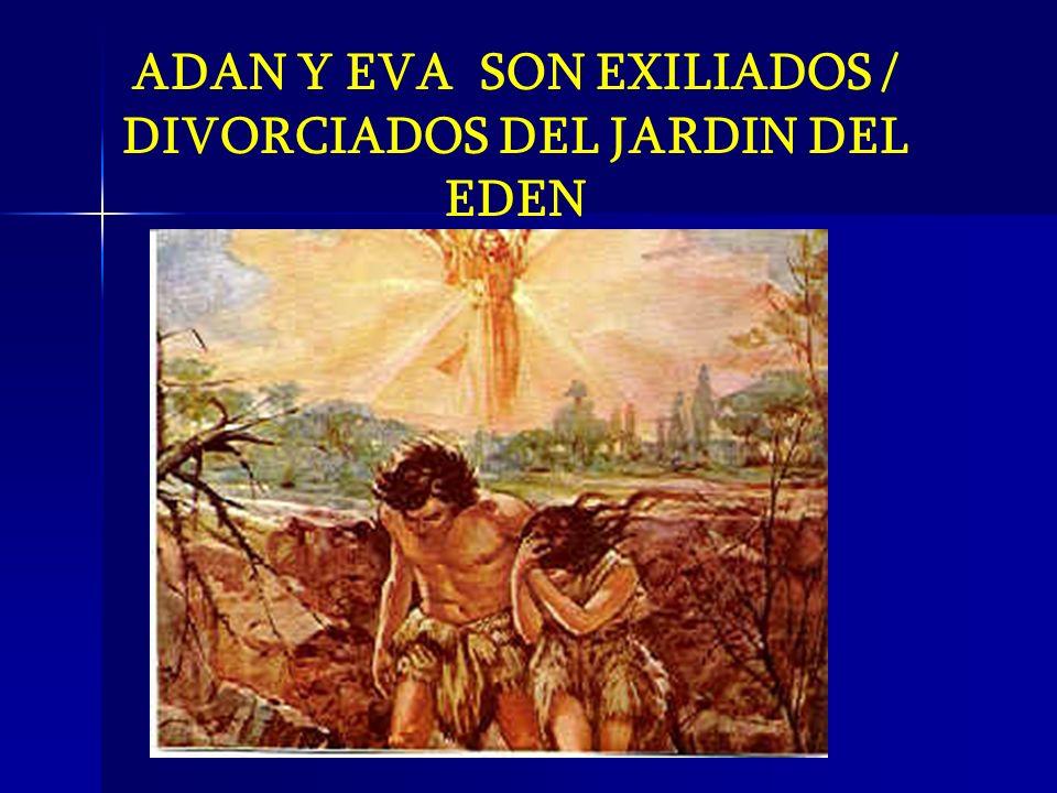 ADAN Y EVA SON EXILIADOS / DIVORCIADOS DEL JARDIN DEL EDEN