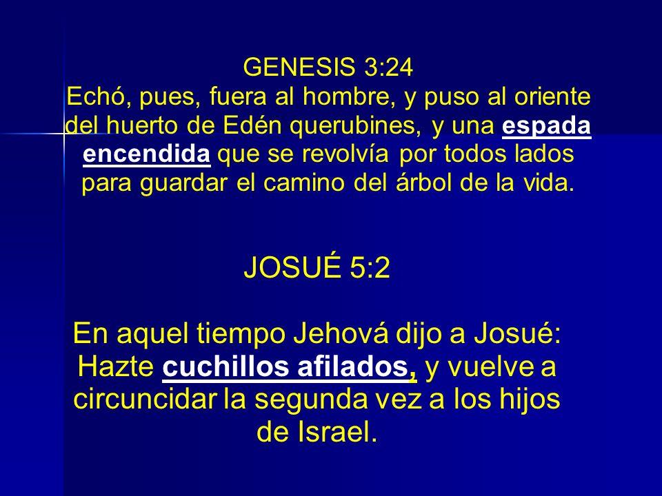 GENESIS 3:24