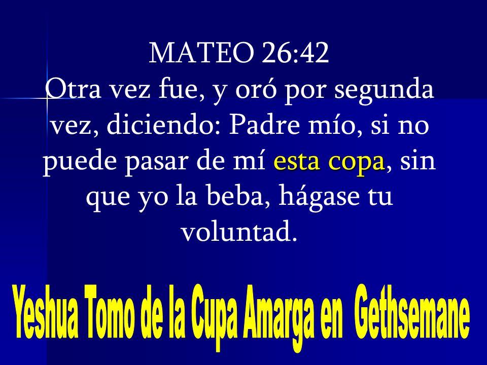 Yeshua Tomo de la Cupa Amarga en Gethsemane