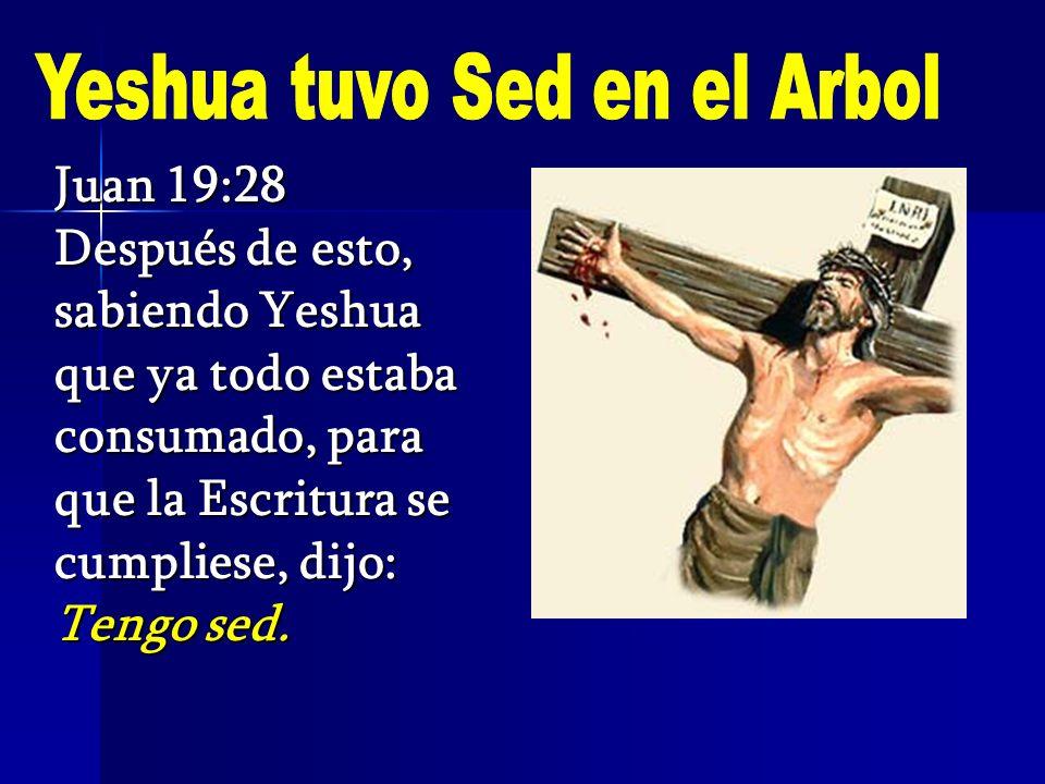 Yeshua tuvo Sed en el Arbol