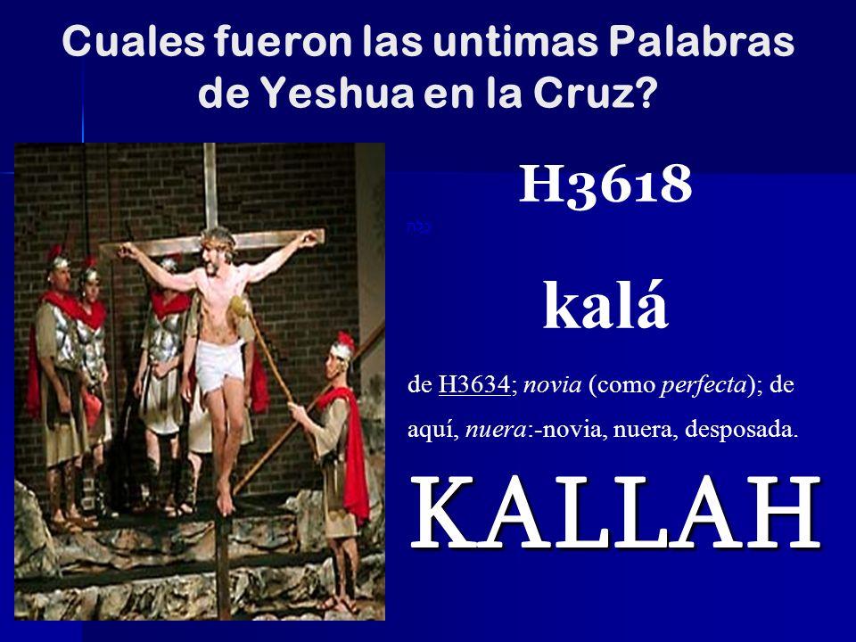 Cuales fueron las untimas Palabras de Yeshua en la Cruz
