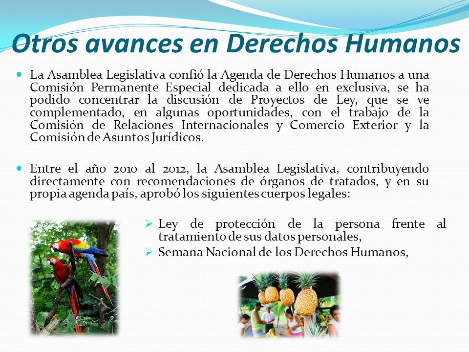 Otros avances en Derechos Humanos