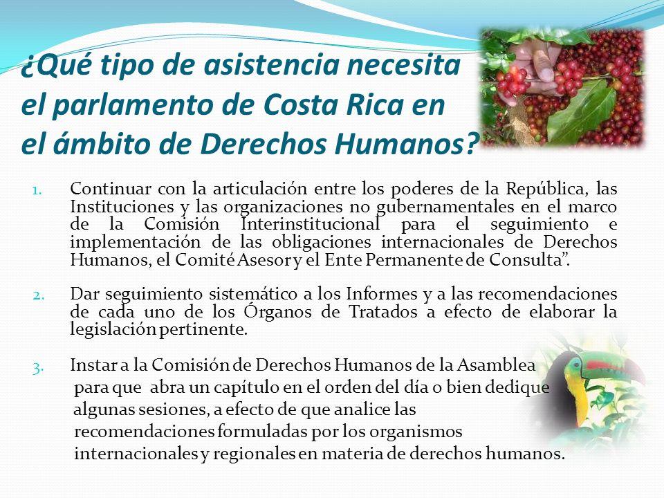 ¿Qué tipo de asistencia necesita el parlamento de Costa Rica en el ámbito de Derechos Humanos