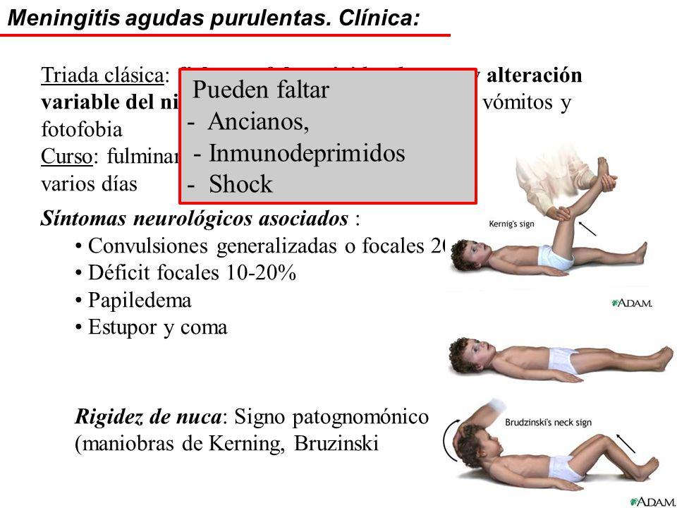 - Ancianos, - Inmunodeprimidos - Shock