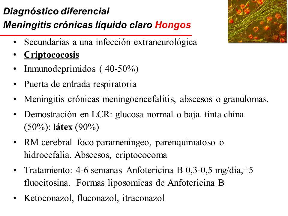 Diagnóstico diferencial Meningitis crónicas líquido claro Hongos