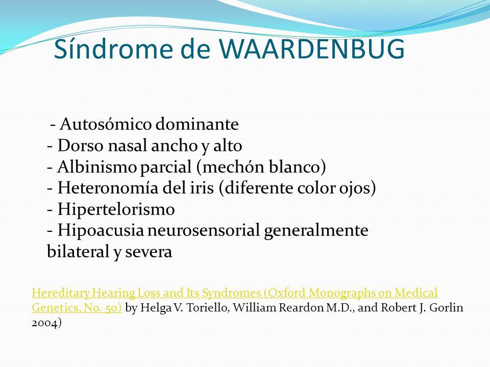Síndrome de WAARDENBUG