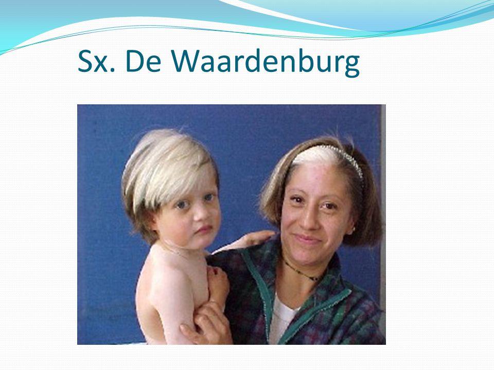 Sx. De Waardenburg