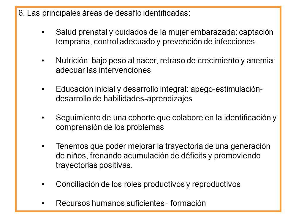 6. Las principales áreas de desafío identificadas: