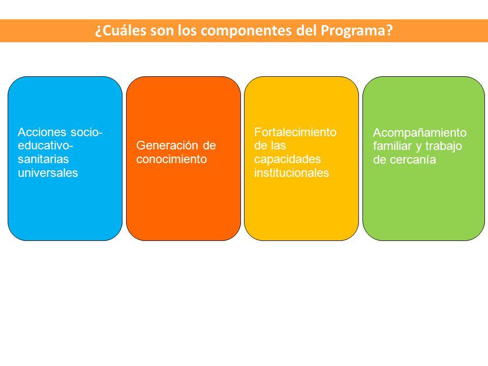 ¿Cuáles son los componentes del Programa