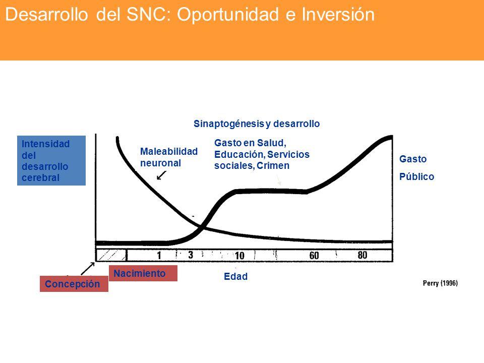 Desarrollo del SNC: Oportunidad e Inversión