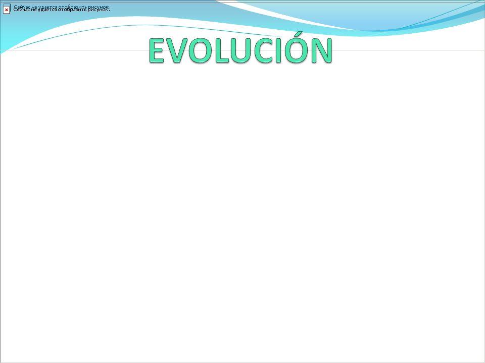 EVOLUCIÓN Fluctuación del cuadro desde el ingreso.