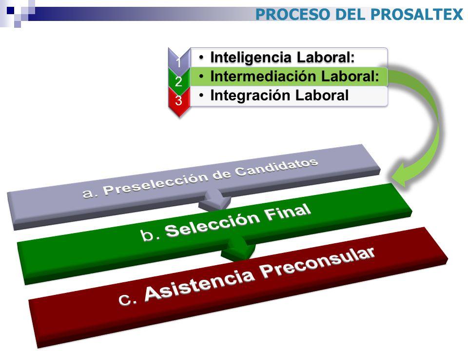 a. Preselección de Candidatos