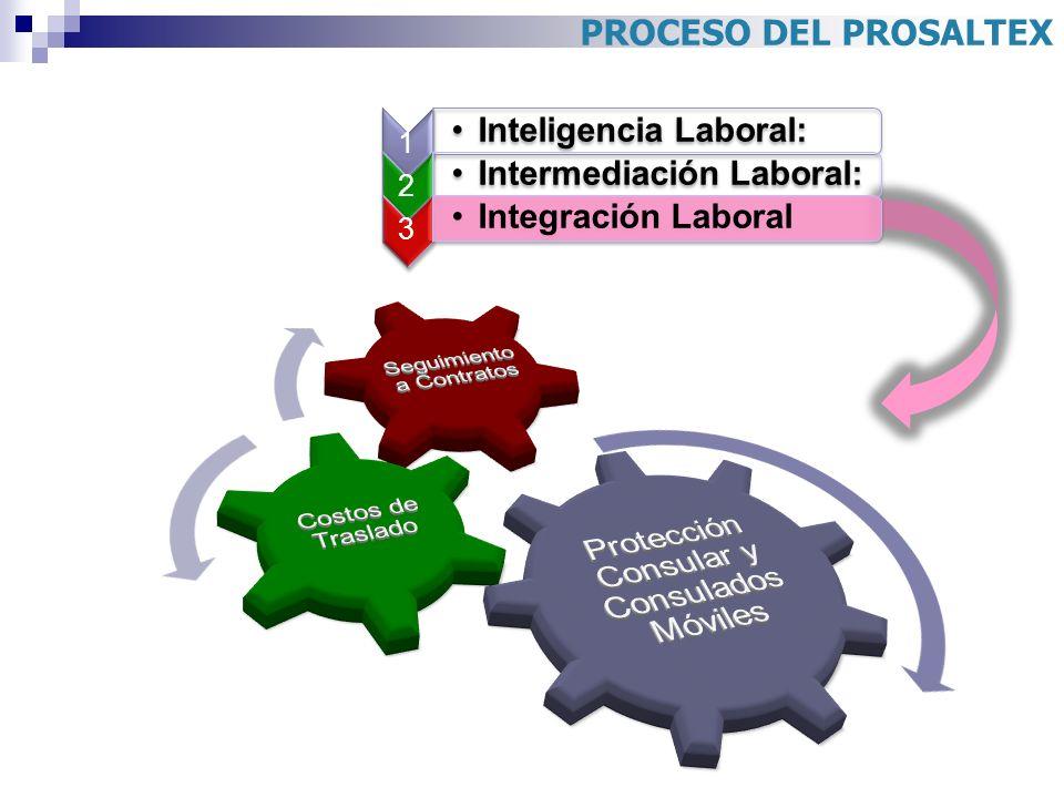 Protección Consular y Consulados Móviles