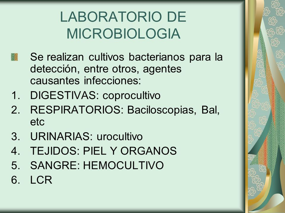 LABORATORIO DE MICROBIOLOGIA