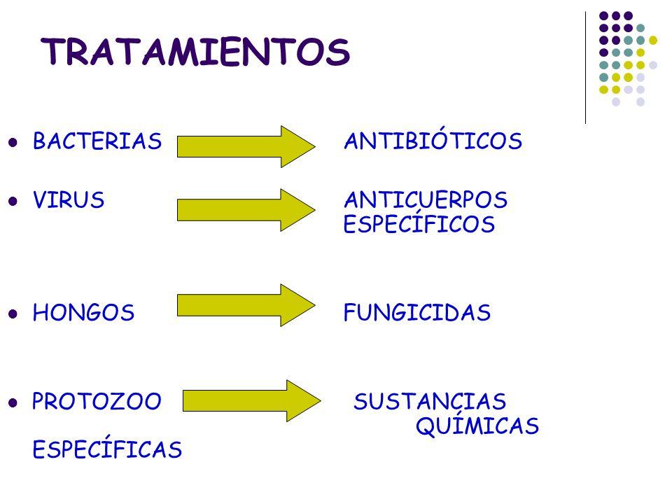 TRATAMIENTOS BACTERIAS ANTIBIÓTICOS VIRUS ANTICUERPOS ESPECÍFICOS