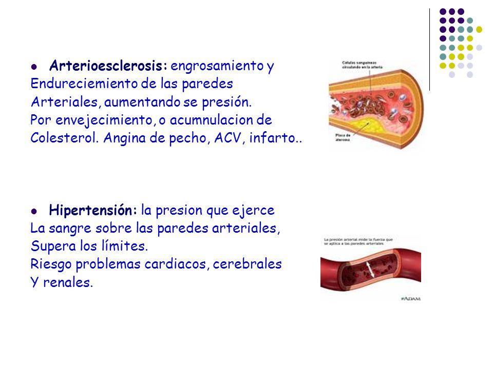 Arterioesclerosis: engrosamiento y