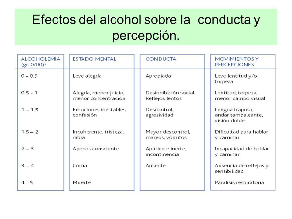Efectos del alcohol sobre la conducta y percepción.