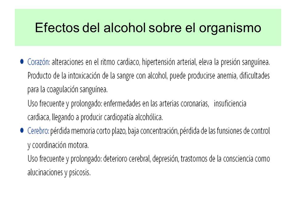 Efectos del alcohol sobre el organismo