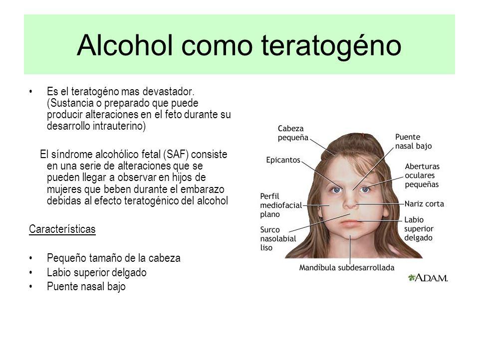 Alcohol como teratogéno