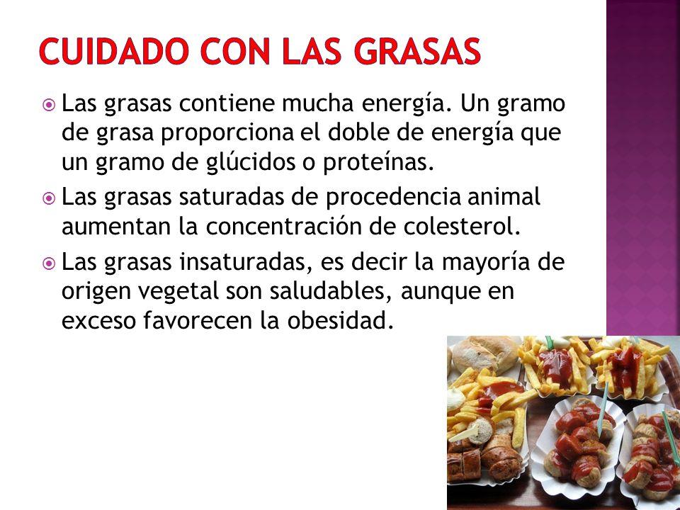 CUIDADO CON LAS GRASAS Las grasas contiene mucha energía. Un gramo de grasa proporciona el doble de energía que un gramo de glúcidos o proteínas.