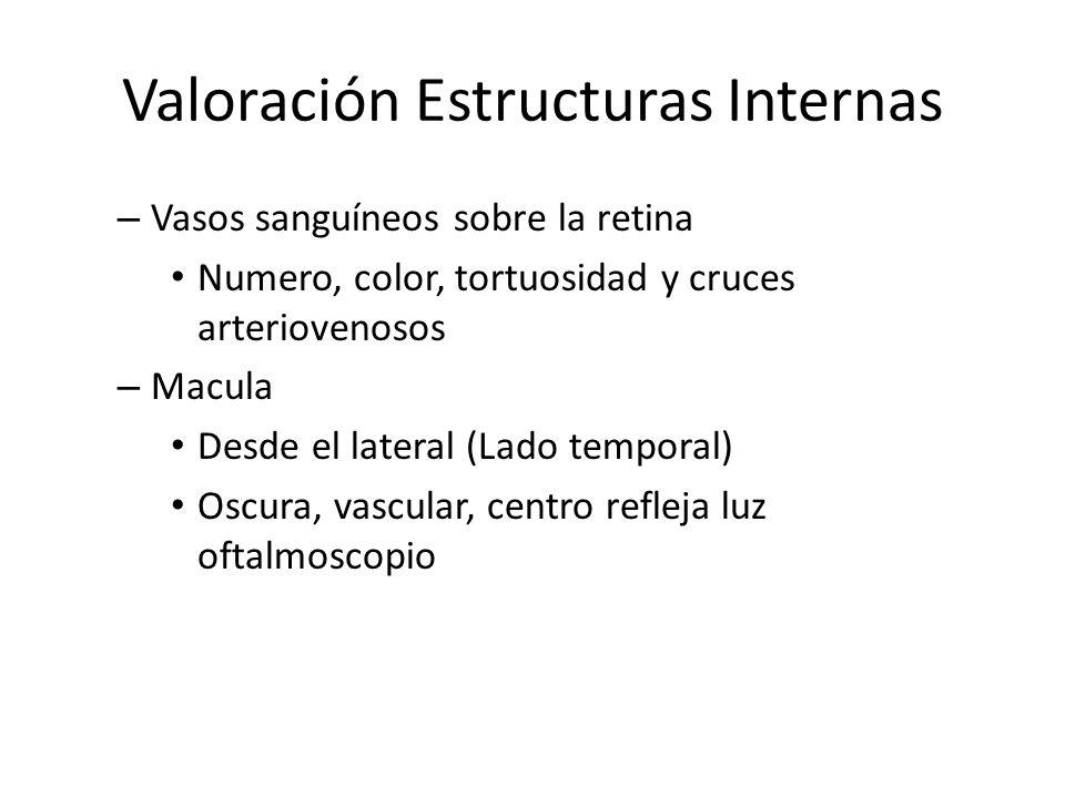 Valoración Estructuras Internas