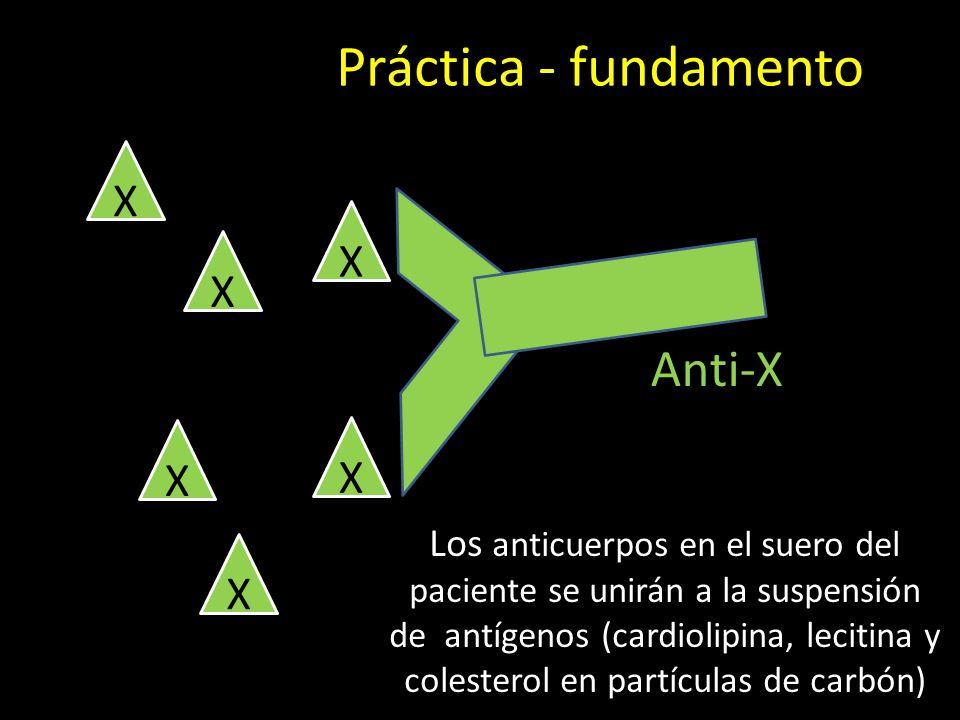 Práctica - fundamento Anti-X X X X X X X