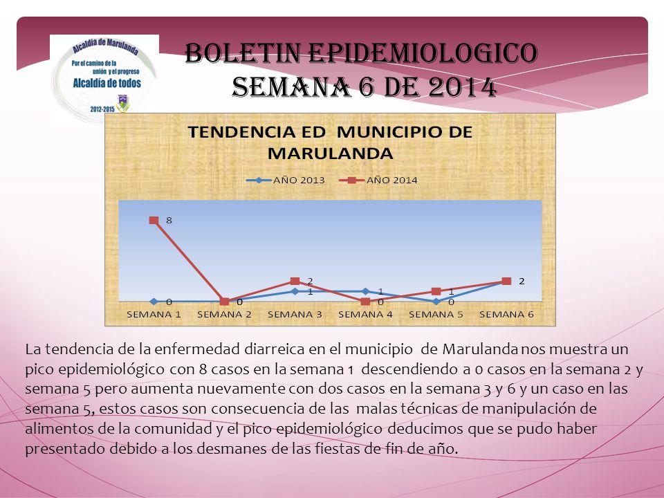 BOLETIN EPIDEMIOLOGICO SEMANA 6 DE 2014
