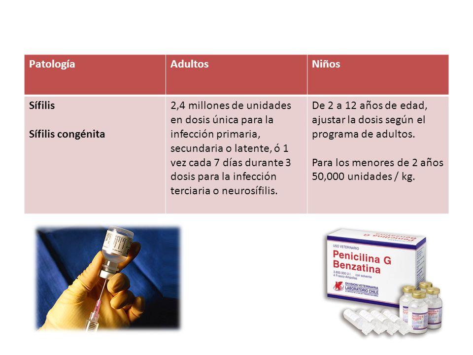 Patología Adultos. Niños. Sífilis. Sífilis congénita.