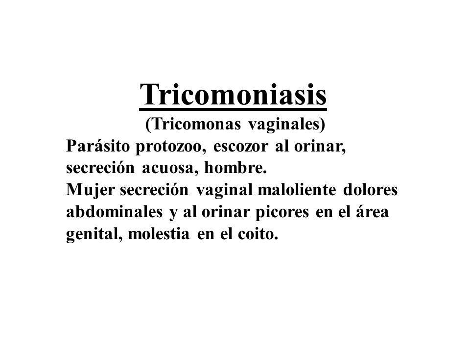 (Tricomonas vaginales)