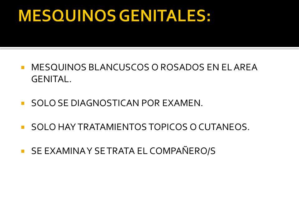 MESQUINOS GENITALES: MESQUINOS BLANCUSCOS O ROSADOS EN EL AREA GENITAL. SOLO SE DIAGNOSTICAN POR EXAMEN.
