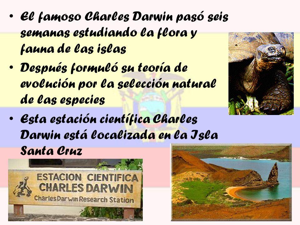 El famoso Charles Darwin pasó seis semanas estudiando la flora y fauna de las islas