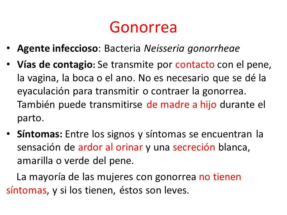 Gonorrea Agente infeccioso: Bacteria Neisseria gonorrheae