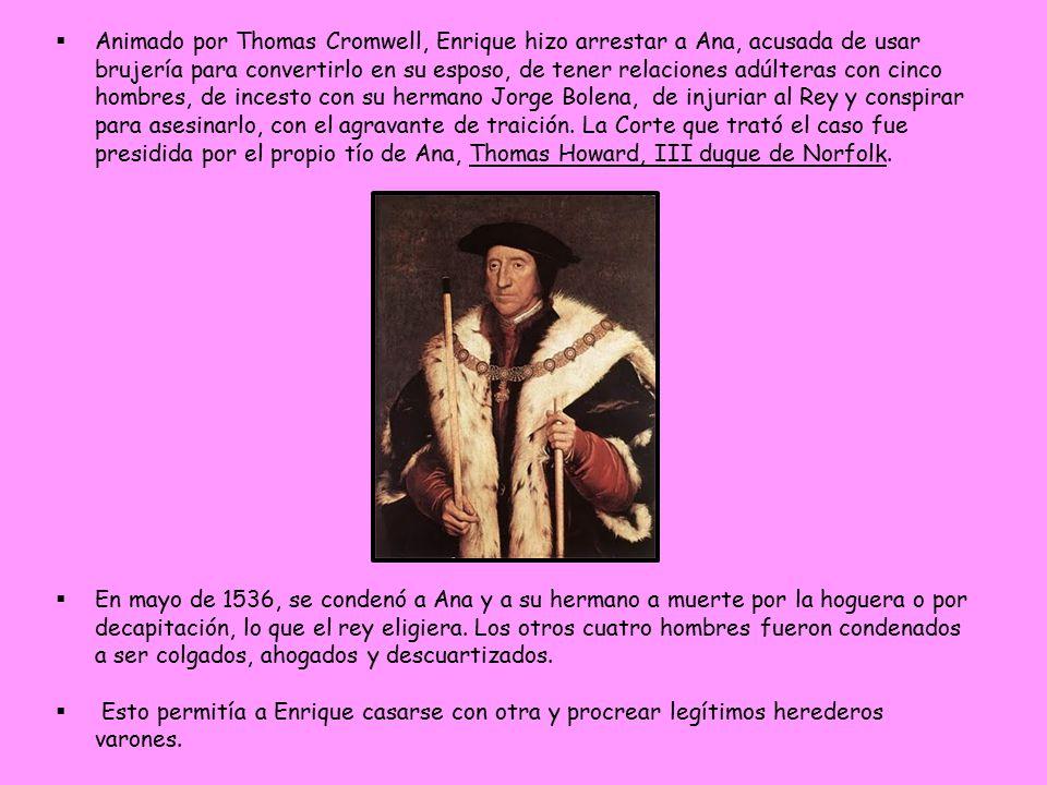 Animado por Thomas Cromwell, Enrique hizo arrestar a Ana, acusada de usar brujería para convertirlo en su esposo, de tener relaciones adúlteras con cinco hombres, de incesto con su hermano Jorge Bolena, de injuriar al Rey y conspirar para asesinarlo, con el agravante de traición. La Corte que trató el caso fue presidida por el propio tío de Ana, Thomas Howard, III duque de Norfolk.