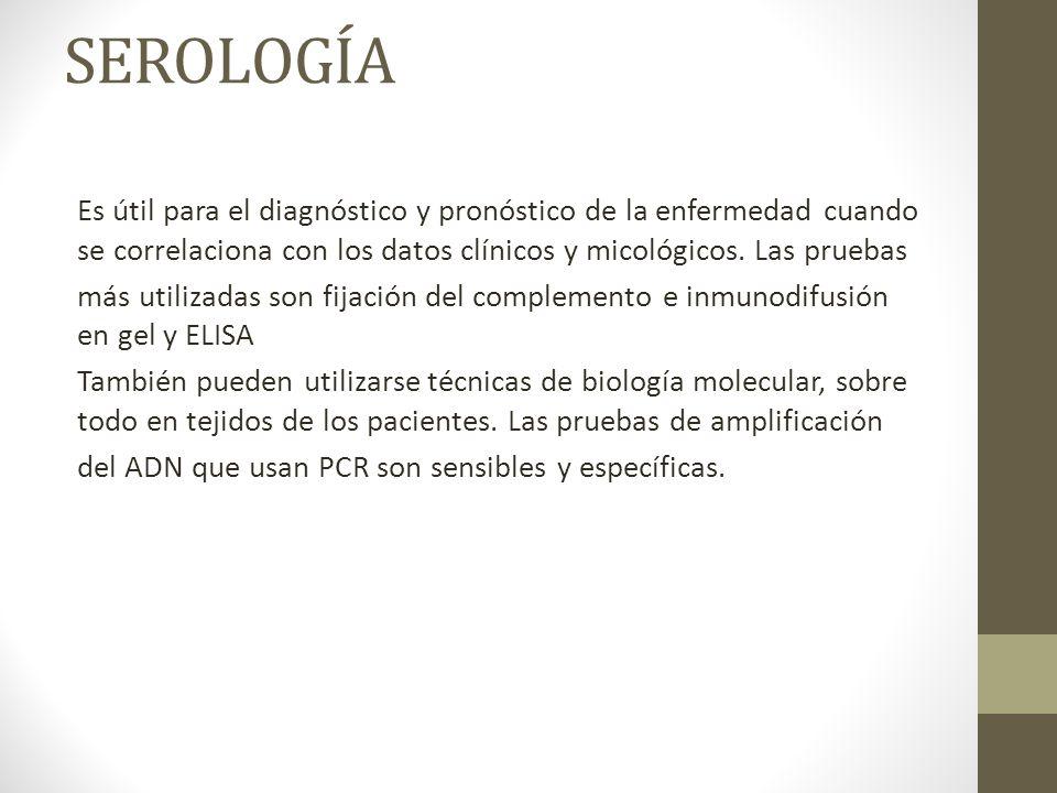 SEROLOGÍA Es útil para el diagnóstico y pronóstico de la enfermedad cuando se correlaciona con los datos clínicos y micológicos. Las pruebas.