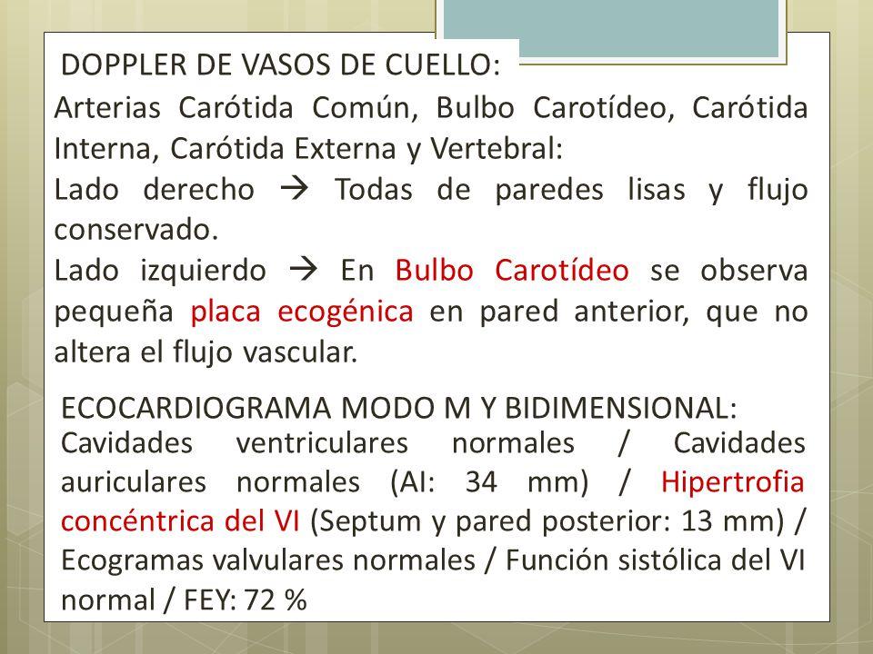DOPPLER DE VASOS DE CUELLO: