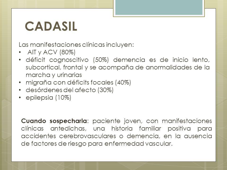 CADASIL Las manifestaciones clínicas incluyen: AIT y ACV (80%)