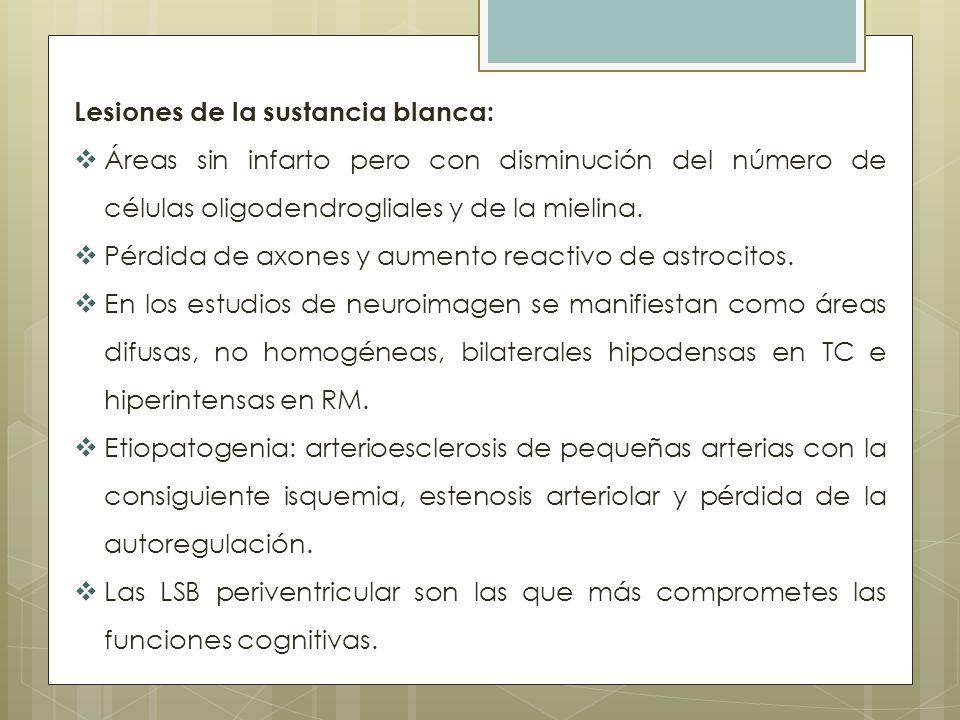 Lesiones de la sustancia blanca: