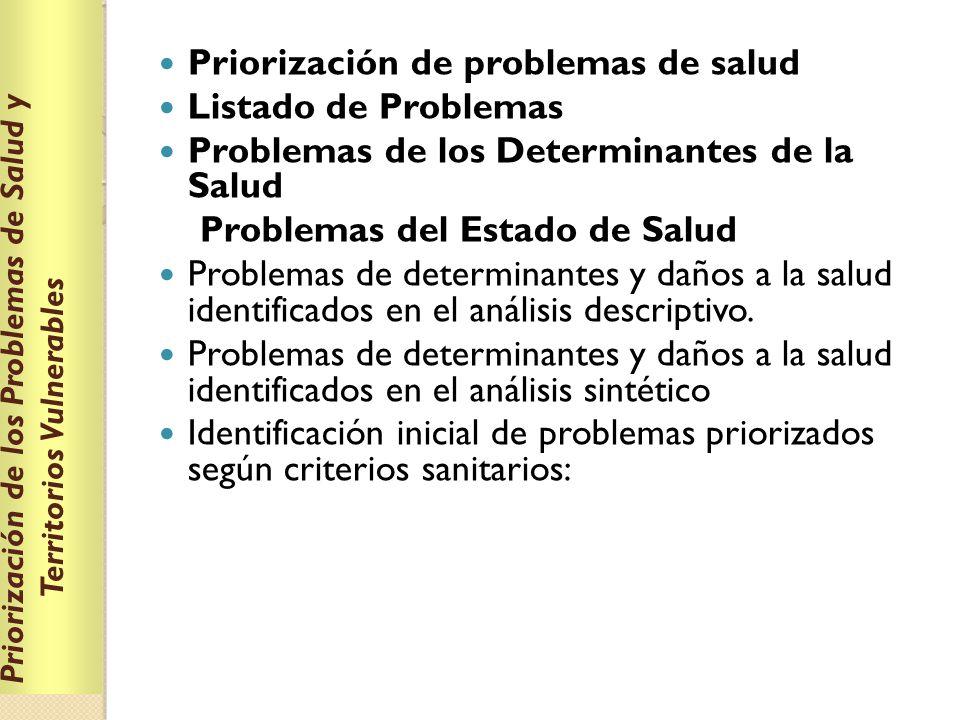 Priorización de los Problemas de Salud y Territorios Vulnerables