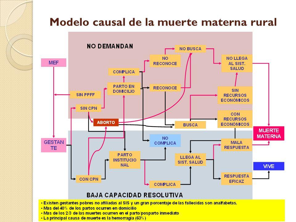 Modelo causal de la muerte materna rural