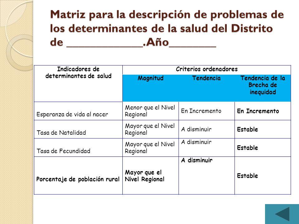Matriz para la descripción de problemas de los determinantes de la salud del Distrito de _____________. Año________