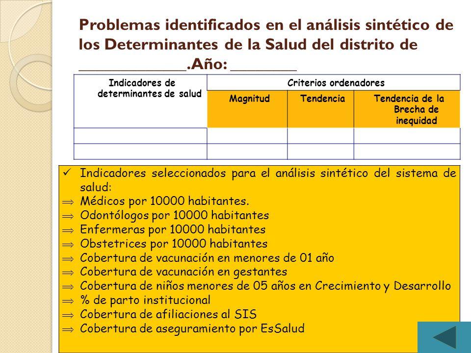 Problemas identificados en el análisis sintético de los Determinantes de la Salud del distrito de _____________. Año: ________