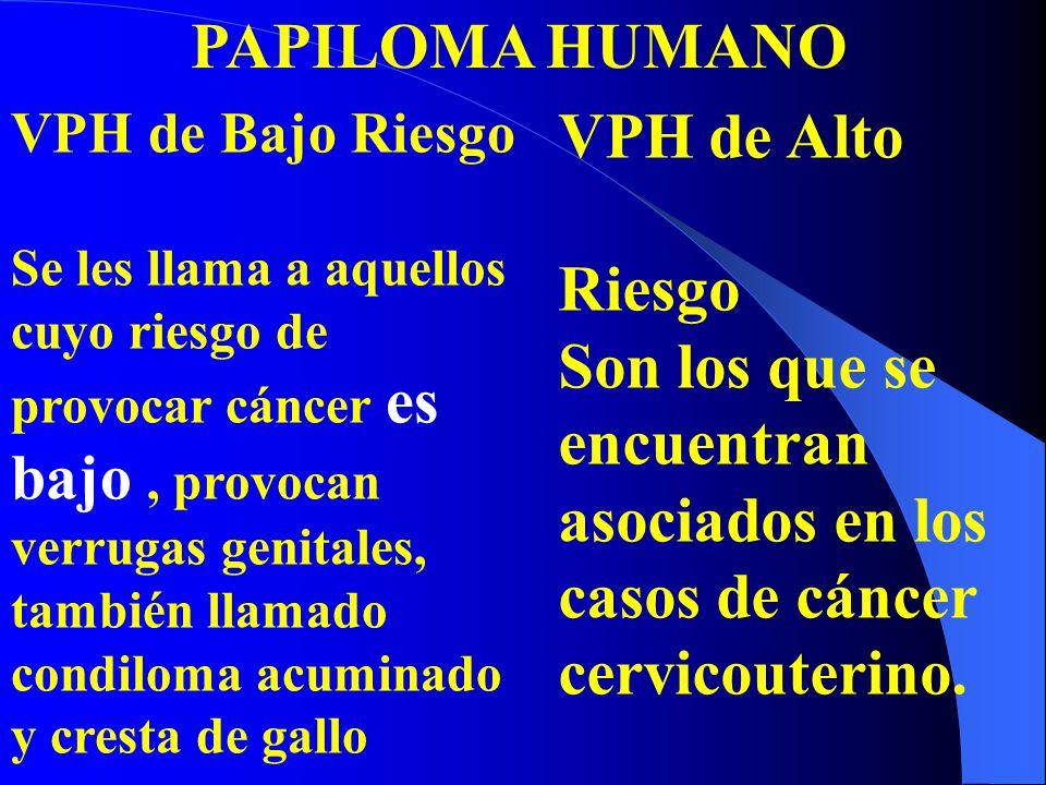 PAPILOMA HUMANO VPH de Alto Riesgo
