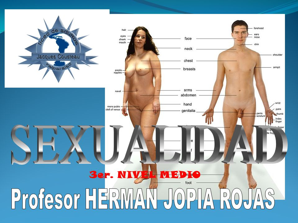 Profesor HERMAN JOPIA ROJAS