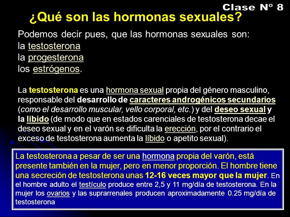 Clase Nº 8 ¿Qué son las hormonas sexuales