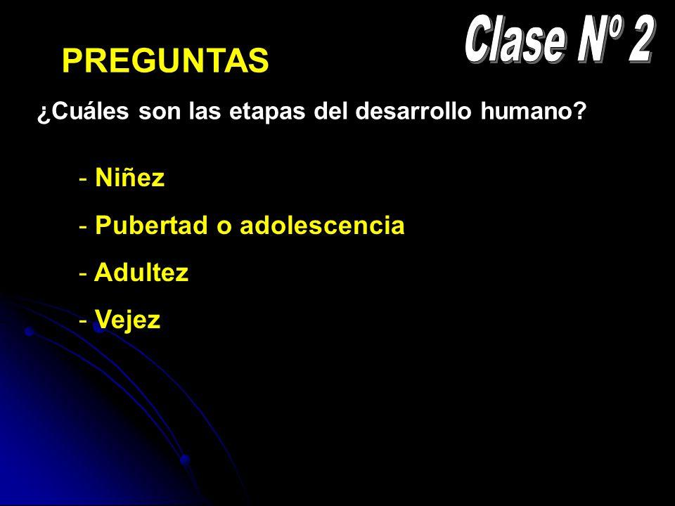 Clase Nº 2 PREGUNTAS Niñez Pubertad o adolescencia Adultez Vejez