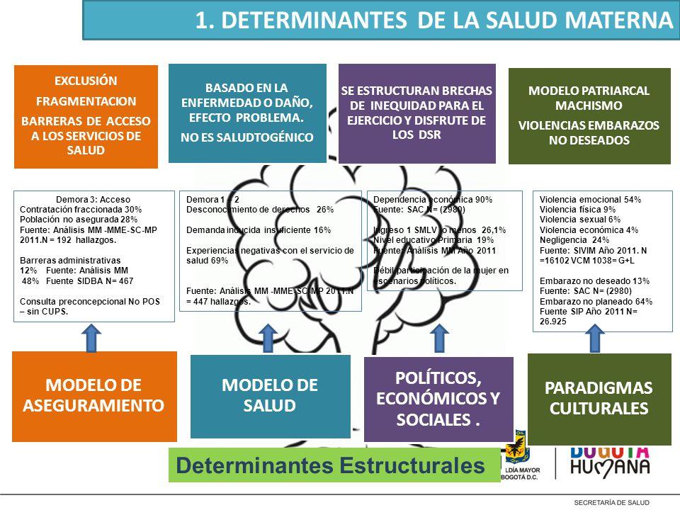 1. DETERMINANTES DE LA SALUD MATERNA